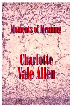 Moments of Meaning book cover