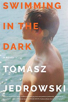 Swimming in the Dark book cover