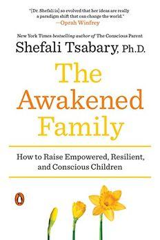 The Awakened Family book cover