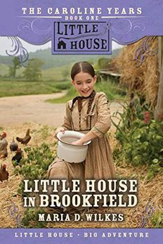 Little House in Brookfield book cover