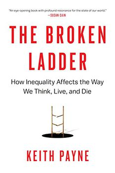 The Broken Ladder book cover