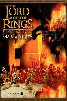 Shadow and Flame book cover