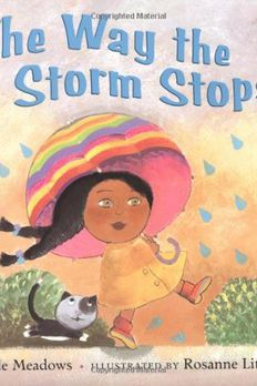 The Way the Storm Stops book cover