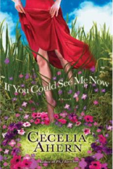 If You Could See Me Now book cover