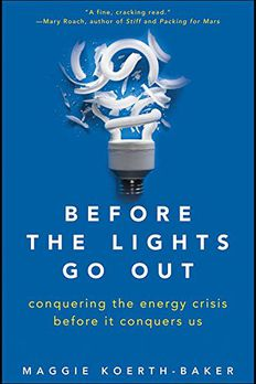 Before the Lights Go Out book cover