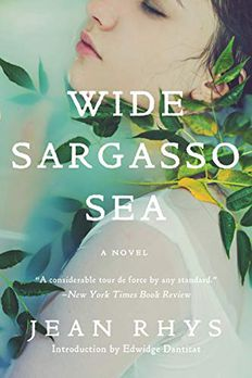 Wide Sargasso Sea book cover