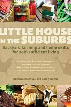 Little House in the Suburbs book cover