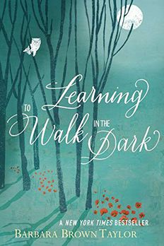 Learning to Walk in the Dark book cover